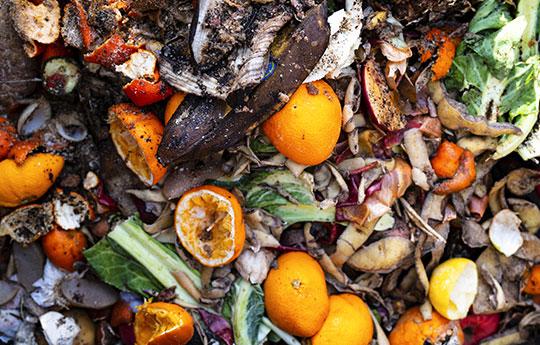 unverpackte Lebensmittelabfälle